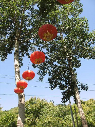 Chine191