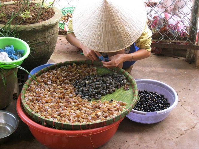 Vietnam011